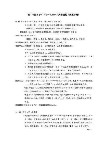 02 第10回トライドリームカップ大会規約 実施詳細のサムネイル
